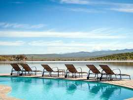 Buffelsdrift Game Lodge Accommodation In Oudtshoorn Swimming Pool 1