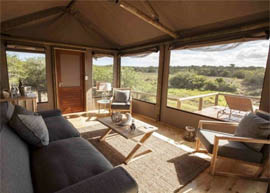 Lion Roars Hotels And Lodges Portfolio Hlosi Game Lodge Amakhala Game Reserve
