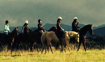 Plettenberg Bay Activities Hog Hollow Horseriding
